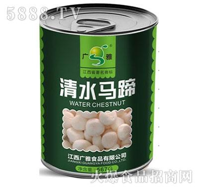 广雅清水马蹄罐头567G