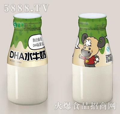 桂牛DHA水牛奶200ml瓶装