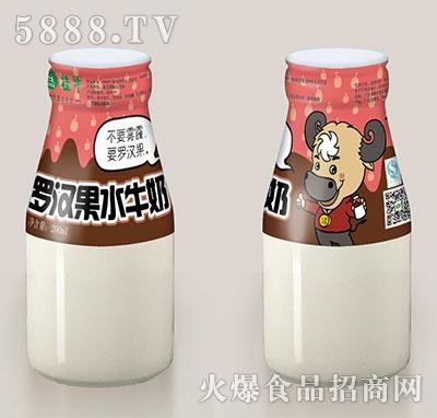 桂牛罗汉果水牛奶200ml