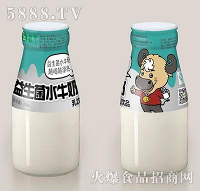 桂牛益生菌水牛奶200ml