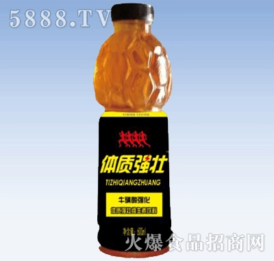体质强壮维生素饮料600ml产品图