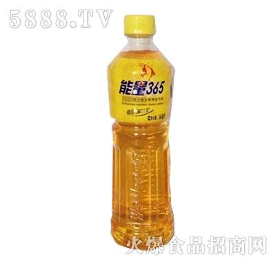 能量365饮料580ml