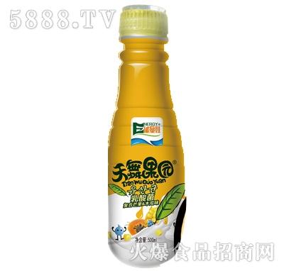 500mlx15瓶瓶天舞果园乳酸菌复合芒果木瓜味