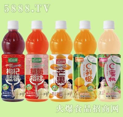 益和源500ml果汁饮料