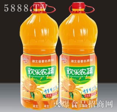 2L贵海泉欢乐农蔬果汁饮料