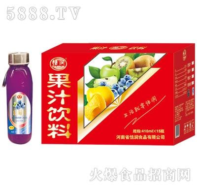 恬润410ml蓝莓汁
