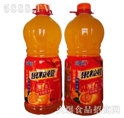 徐府记果粒橙果味饮料