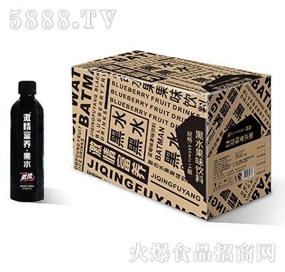 激情富养黑水果味饮料500mlx15瓶