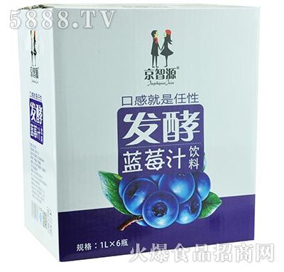 京智源发酵蓝莓汁1lx6瓶