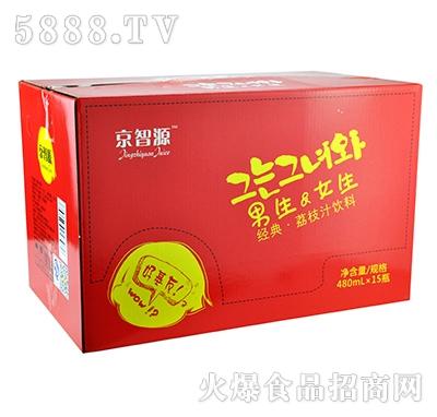 京智源男生女生荔枝汁480mlx15瓶