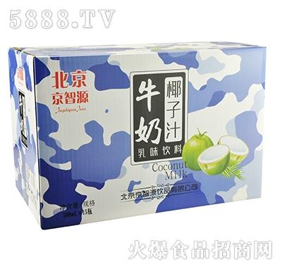 京智源椰子汁牛奶500mlx15瓶