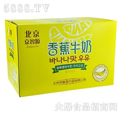 京智源香蕉牛奶500mlx15瓶