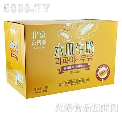京智源木瓜牛奶500x15瓶