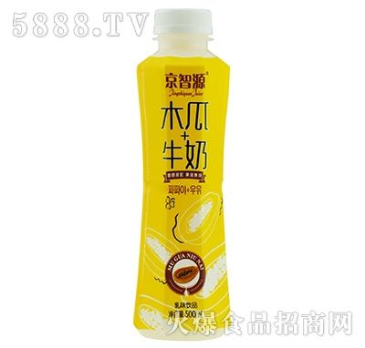 京智源木瓜牛奶500毫升