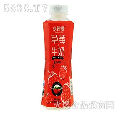 京智源草莓牛奶500毫升