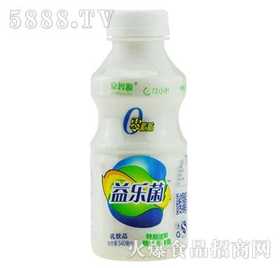 京智源益乐菌乳饮品340毫升