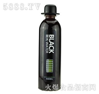 京智源黑水红提果汁500毫升