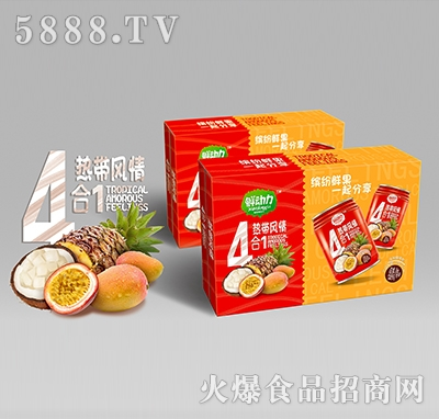 鲜动力4合1热带风情混合果汁245mlx20