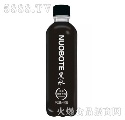 黑水蓝莓果味饮料480g
