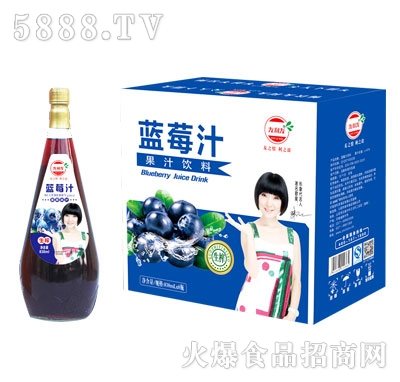 友利友蓝莓汁838mlx8