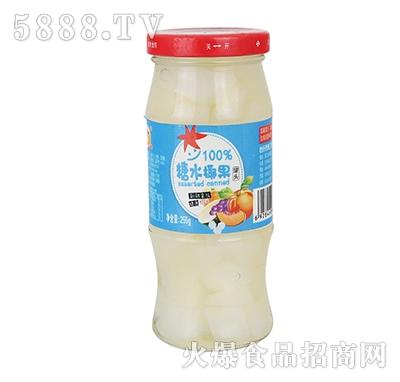 冬宝糖水椰果罐头255g