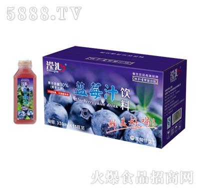 滢沁蓝莓汁饮料330mlx15瓶装