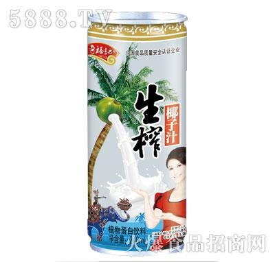 奇福记生榨椰子汁植物蛋白饮料240ml