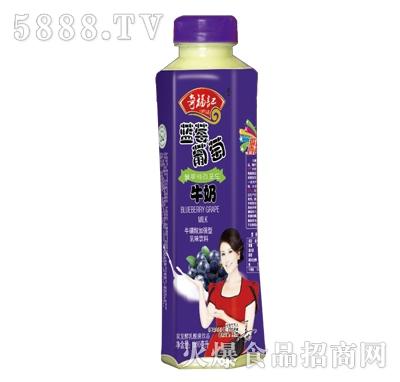 奇福记蓝莓葡萄牛奶乳味饮料500ml