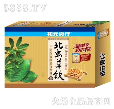 初元食疗北虫草饮复合植物蛋白饮料箱装