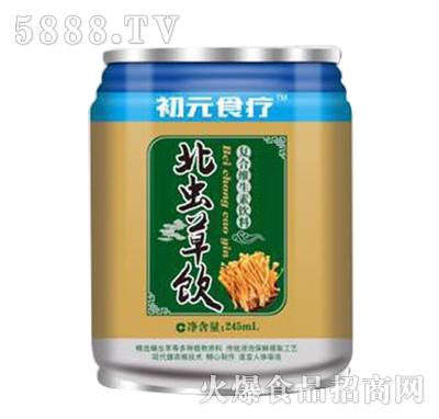初元食疗北虫草饮复合维生素饮料245ml