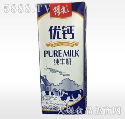 阳光优钙纯牛奶250ml