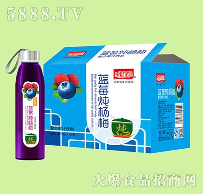 益和源葡萄炖蓝莓果汁饮料420mlx12瓶