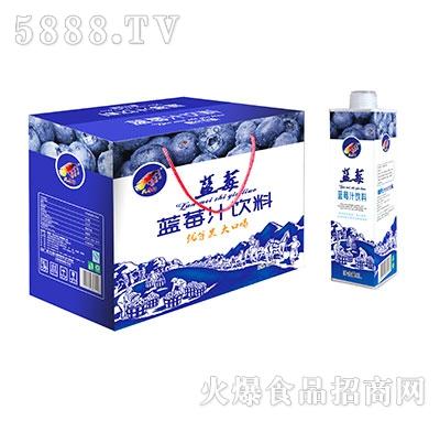 大马邦蓝莓汁饮料1Lx8瓶