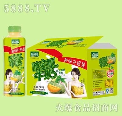 益和源哈蜜瓜牛奶500毫升x15瓶