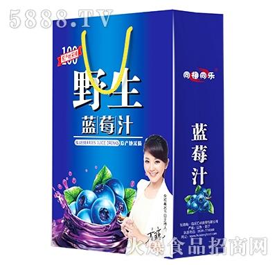 同瑞同乐野生蓝莓汁礼盒