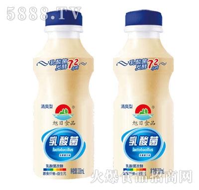旭日食品乳酸菌饮品(瓶)