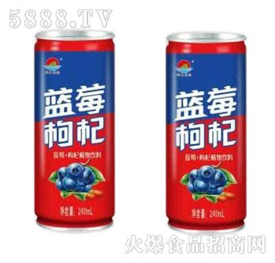 蓝莓枸杞植物饮料240ml
