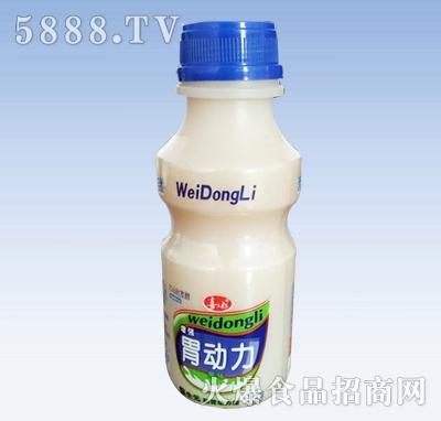 喜三郎胃动力乳酸菌瓶装