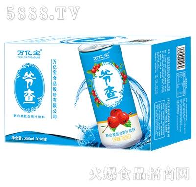 万亿宝爷查野山楂复合果汁饮料250mlx20罐
