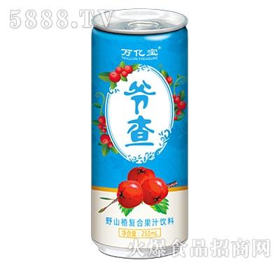 万亿宝爷查野山楂复合果汁饮料250ml
