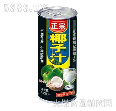 正宗椰子汁植物蛋白饮料--240ml