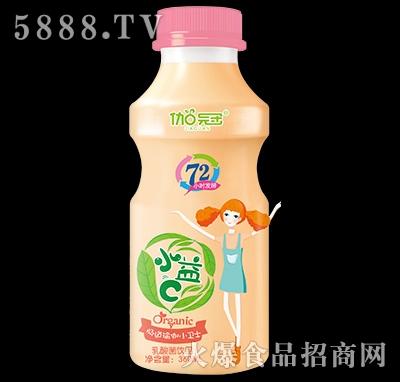 360ml伽冠乳酸菌饮品