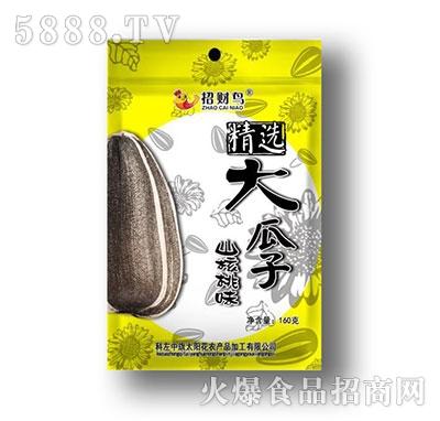 招财鸟精选大瓜子山核桃味160g