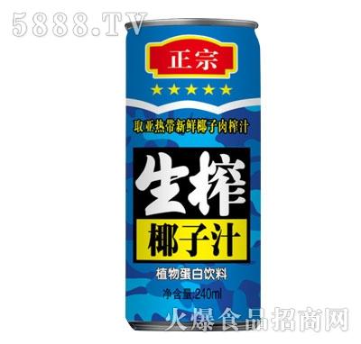 正宗生榨椰子汁植物蛋白饮料240ml