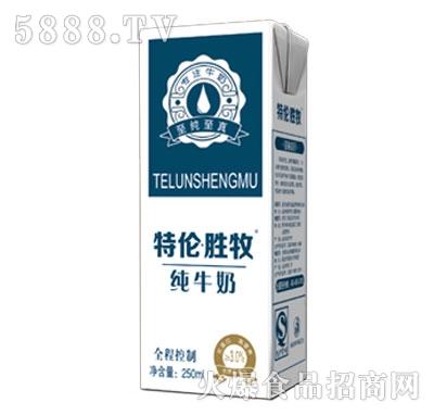 特伦・胜牧纯牛奶250ml