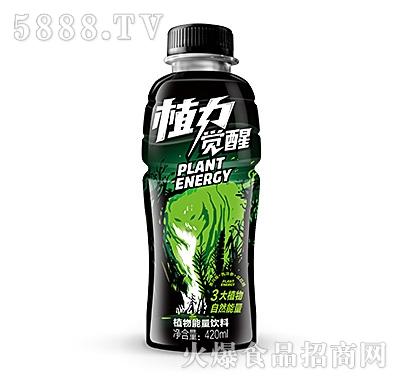 绿梦植物觉醒植物能量饮料420ml
