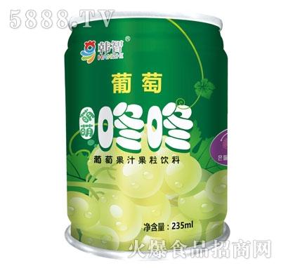 韩智葡萄果汁果粒饮料