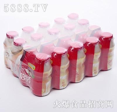 启活1X20瓶乳酸菌饮品