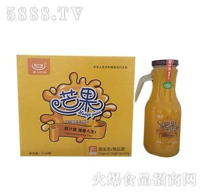 粒汁健芒果果汁饮料