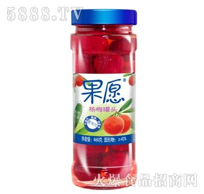 【果愿】杨梅罐头 460g